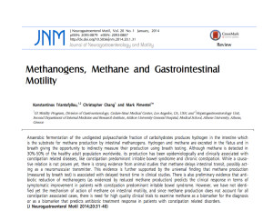 Methanogens and GI Motility
